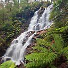 Wombelano Falls by Travis Easton
