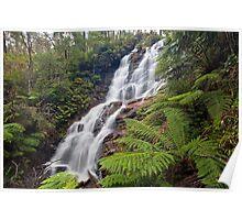 Wombelano Falls Poster