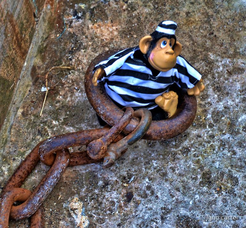 'Monkey Business ' by lynn carter