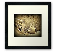 Fishing alone Framed Print