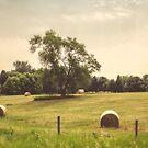 Along the Rural Road by KBritt