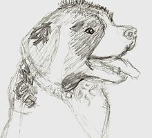 St Bernard Sketch by Jay Reed