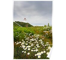 Cape Enrage Lighthouse Poster