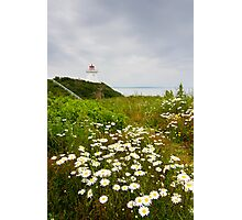 Cape Enrage Lighthouse Photographic Print