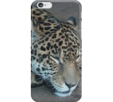 Jaguar iPhone Case/Skin