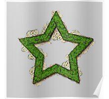 Fruit & Vegetable Green Star Poster