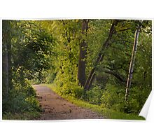 Light to my Path ~ Psalm 119:105 Poster