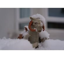 Tauntaun in snow Photographic Print