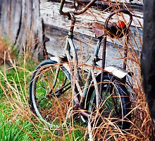 Abandoned Bike by MWAC