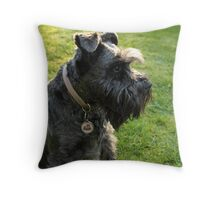 Miniature Schnauzer II Throw Pillow