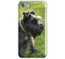 Miniature Schnauzer II iPhone Case/Skin