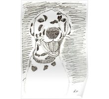 Dotty in Pencil Poster