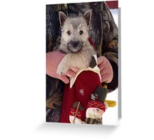 Look what Santa left for us! Greeting Card