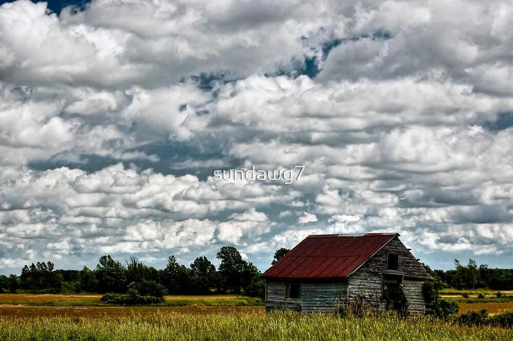 Under Grandiose Skies by sundawg7