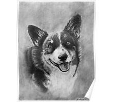 Dog Portrait Commission 2 Poster