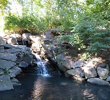 Waterfall, Central Park, NYC by FangFeatures