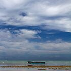 Lonely Boat - Coral Coast, Fiji by clickedbynic