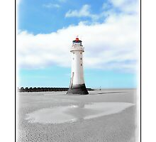 Perch Rock in Isolation by DavidWHughes