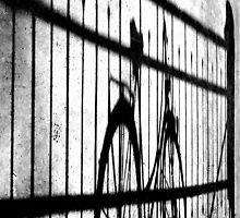 Bicycle shadows by Jean-Luc Rollier
