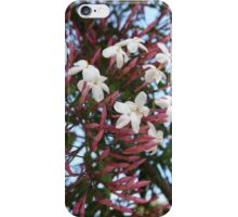 Pink Buds and Jasmine Blossom Close Up iPhone Case/Skin