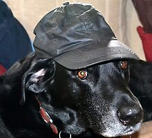 Jake in Hat by lynn carter