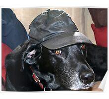 Jake in Hat Poster