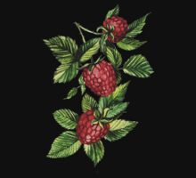 Raspberries One Piece - Short Sleeve
