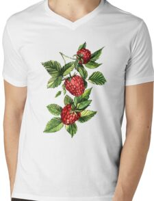 Raspberries Mens V-Neck T-Shirt