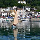 Summer Harbour, Lyme Dorset UK by lynn carter