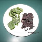 Plantain and seaweed  by DreamCatcher/ Kyrah