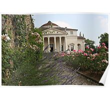 Lavender, Roses & Rotonda Poster