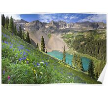 Colorado Wildflowers - Lower Blue Lake Beauty Poster