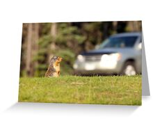 Of Cars and Critters Greeting Card