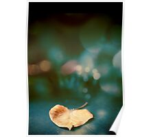 the magic of the leaf Poster