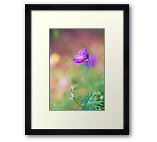 Proud Purple Cranesbill Framed Print