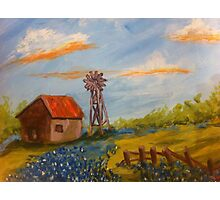 Texas Barn, Windmill & Bluebonnets by Terri Holland Photographic Print