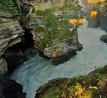 River Canyon by Luann wilslef