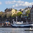 VIEWS OF STOCKHOLM, SWEDEN 11 by danvar