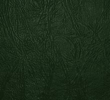 Glossy Green Leather - Close up Texture  by sitnica