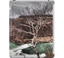 Splendor  iPad Case/Skin