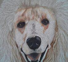 White Standard Poodle by Anita Meistrell Putman
