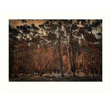 Destructive forest fires, Hermanus,SA Art Print