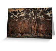 Destructive forest fires, Hermanus,SA Greeting Card