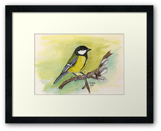 Great Tit by Sam Burchell