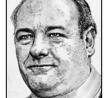 James Gandolfini in 2007 by JMcCombie