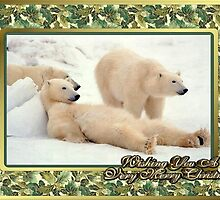 Polar Bear Blank Christmas Greeting Card by Oldetimemercan