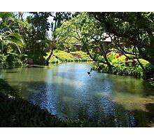 A River Runs Through Hawaii Photographic Print