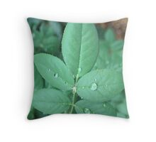 Leaf Water Droplets Throw Pillow