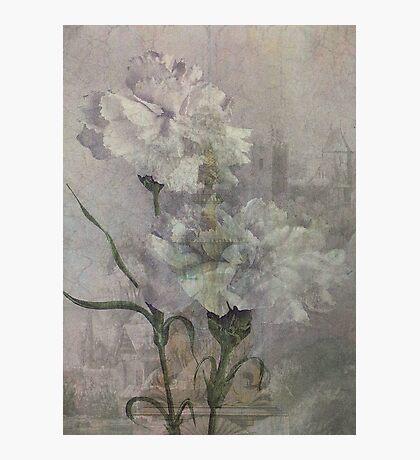 Castle Flowers Photographic Print