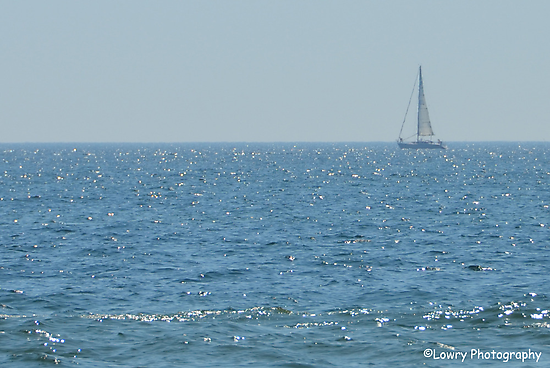 Sailing The Dream by BarbL